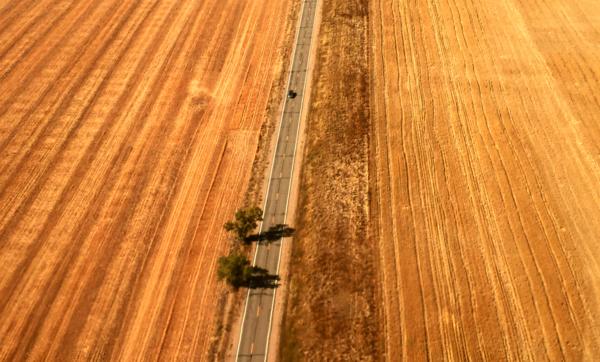 Lone Car, Colorado Plains