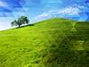 Prismatic Hill