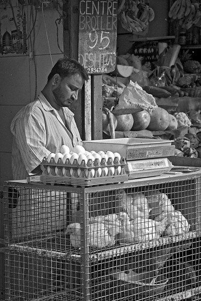 "Eggs & chickens<br /> 09 July 2010<br /> <br /> Shot at Colaba market in South Mumbai. <br /> The colour version is here:  <br /> <a href=""http://hershy.smugmug.com/Photography/Mumbai-my-city/Misc-shots-of-Mumbai/6410100_x8urE#927522116_5vvgA-A-LB"">http://hershy.smugmug.com/Photography/Mumbai-my-city/Misc-shots-of-Mumbai/6410100_x8urE#927522116_5vvgA-A-LB</a><br /> <br /> <br /> Today is our beloved Dash's birthday, he would have been 17! Guess can't complain because he gave us so much love for 16.6 years..."