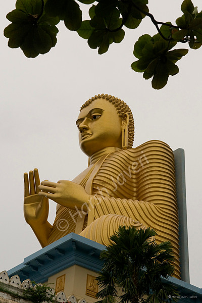 "Buddha statue (Pic 186 2nd year)<br /> D300 17-55 2.8 at ISO400 f8 1/500<br /> <br /> This statue is at Golden temple, Dambulla, Sri Lanka and so TALL it can be seen from miles.  The statue is on the top of the temple building. To get an idea, check yesterday's shot. <br /> <br /> <br /> Dambulla is a small town located at a distance of 19 km from Sigriya on the Sigriya-Kandy road. This temple is at the base of the hill that has Dambulla Rock Temple. <br /> <br />  <a href=""http://www.javeri.net"">http://www.javeri.net</a>"