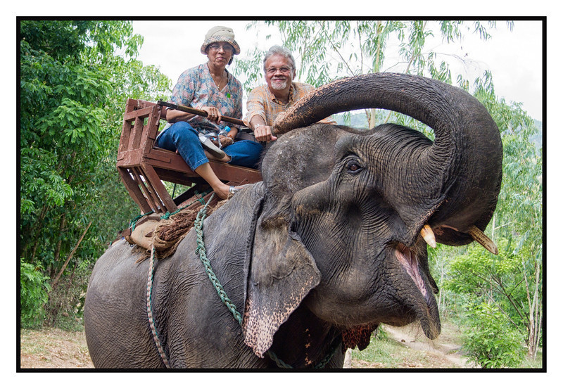 """4th year Pic 158 - June - 13 2012 <span style=""""color:yellow"""">Elephant ride.</span> -  Maetaeng Elephant Park, Cihang Mai, Thailand <span style=""""color:cyan"""">This one is for Art, he commented on my earlier pic that he would like to go for such a ride!</span>  Chiang Mai has several Elephant parks. Maetaeng park offers elephant rides, elephant shows, bullock cart rides and a ride down the rive on a bamboo raft!"""