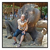"4th year Pic 159 - June - 14 2012 <span style=""color:yellow"">Two jumbos!</span> -  Maetaeng Elephant Park, Cihang Mai, Thailand  It was a super surprise to see my Elephant ride pic at #1 slot this morning (India time)!   Thank you SO much for your supportive comments!"