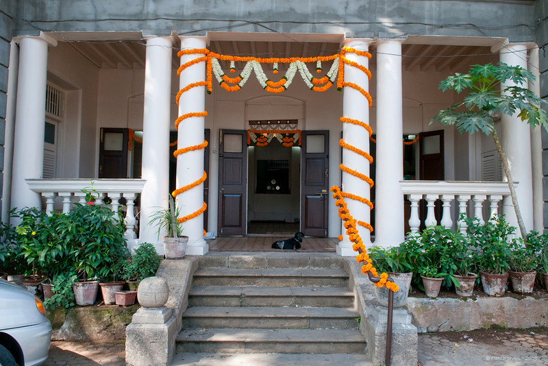 """335<br /> Entrance <br /> D300 17-55mm ISO200 f8 at 1/125<br /> <br /> This is the entrance to my house a day before the wedding when we had some ceremonies at home. Swarup had got strings of Marigold which were put on the railing and the pillars and a 'toran' of flowers to put between the pillars.  Another 'toran' was put up at the door itself.  <br /> <br /> The little fella sitting there is Dash, our family member, wondering what I was doing out of the house without taking him along! <br /> <br /> I had put up a pic of the same entrance during Jay's engagement time and you can see the difference: the place is painted and the paint from the doors is removed and the doors look rich with the polish. The old pic is here:  <br /> <br />  <a href=""""http://hershy.smugmug.com/gallery/6972999_iVPCh/1/472297328_jVULX/Large"""">http://hershy.smugmug.com/gallery/6972999_iVPCh/1/472297328_jVULX/Large</a><br /> <br />  <a href=""""http://www.javeri.net"""">http://www.javeri.net</a>"""