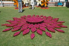 """278 - Feb 25<br /> Flower decoration 2 <br /> <br /> 17-55 2.8 ISO 400 f8 1/800<br /> <br /> This is a detailed view of the flower decoration shot at the wedding in Jaipur. <br /> Rose petals were filled in brass 'pots' and shaped into a huge flower! <br /> <br /> Another shot it at <br /> <br />  <a href=""""http://hershy.smugmug.com/gallery/6972999_iVPCh/1/481113485_YnRQW/Large"""">http://hershy.smugmug.com/gallery/6972999_iVPCh/1/481113485_YnRQW/Large</a><br /> <br /> <br /> <br />  <a href=""""http://www.javeri.net"""">http://www.javeri.net</a>"""