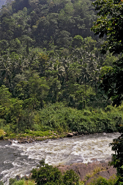 """3rd year Pic 007<br /> Kelani River, Sri Lanka<br /> <br /> The Academy Award-winning """"The Bridge on the River Kwai"""" was filmed on the Kelani River near Kitulgala, although nothing remains now except the concrete foundations for the bridge. Kitulgala is also a base for white-water rafting, which starts a few kilometres upstream. More info on the shooting of the scene can be read at <br /> <br />  <a href=""""http://en.wikipedia.org/wiki/The_Bridge_on_the_River_Kwai"""">http://en.wikipedia.org/wiki/The_Bridge_on_the_River_Kwai</a><br /> <br />  <a href=""""http://en.wikipedia.org/wiki/Kitulgala"""">http://en.wikipedia.org/wiki/Kitulgala</a>"""