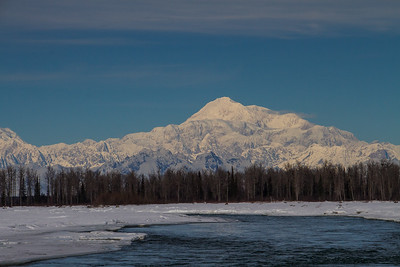 2.29.16: Denali, as seen from the shore of the Susitna Rive on a glorious mid -winters day.