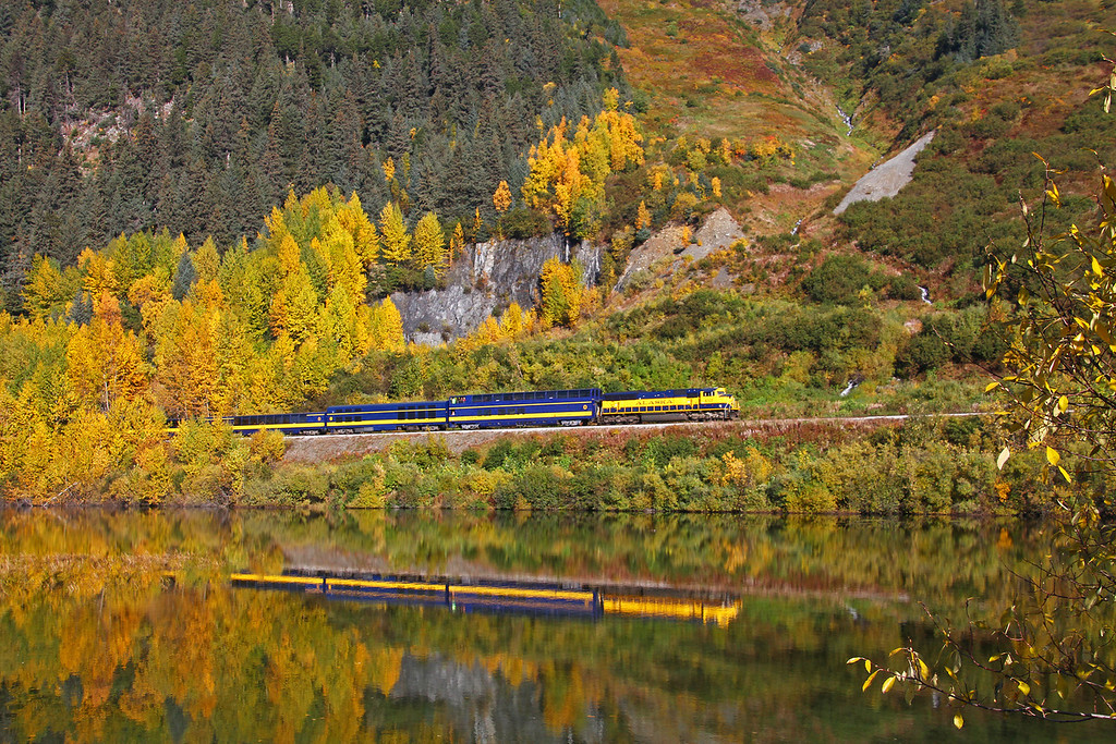On a beautiful fall day a southbound passenger train rolls through the fall colors near Girdwood, AK. The colors of the train really help accent the fall colors in my opinion.