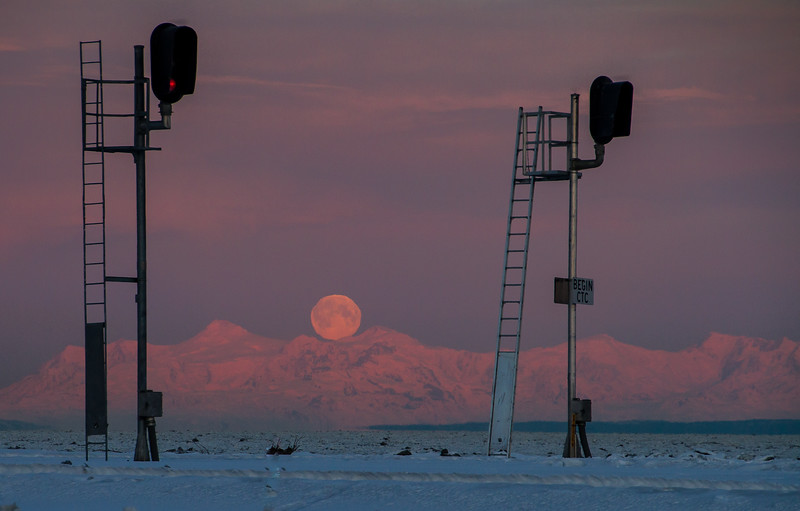 Full Moon Sentinels