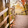 """10-25-2010<br /> """" Follow The Path Less Traveled"""""""