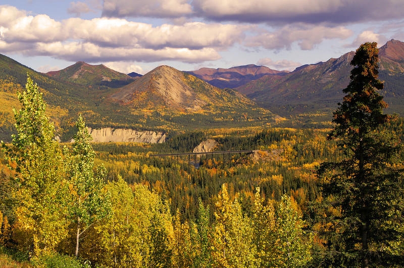 From the shoulder of Denali Park Road is a fantastic view of the mountains and Riley Creek.