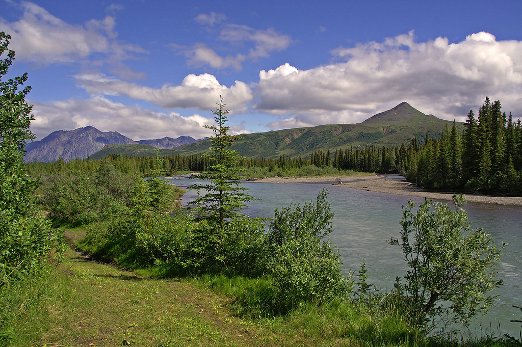 Cantwell is a beautiful small town in Alaska north of Anchorage and south of Denali.