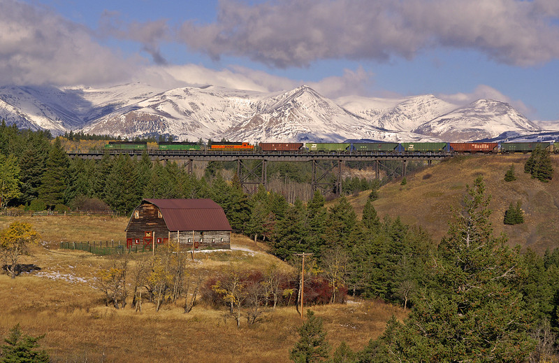 A BNSF grain train crosses Two Medicine Bridge as the viewer looks into Glacier National Park.