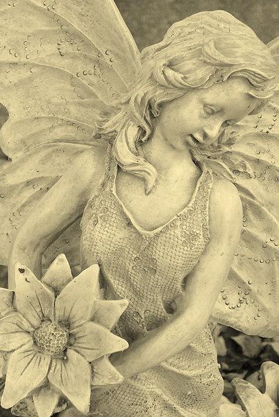 Sephia Angel