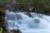 Another shot from Fossil Creek.<br /> <br /> Taken 2012.05.05, Fossil Creek, AZ, USA