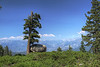 Panoramic Point near Grant Grove in Kings Canyon National Park.