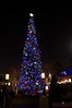 Christmas tree at Disney California Adventure park <br /> <br /> Merry Christmas!<br /> <br /> Taken 2012.12.16, At the Happiest place on earth