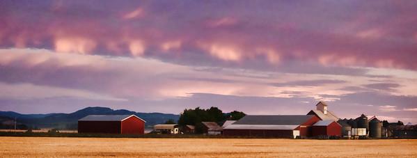 8/22/2011  Sunrise at the farm