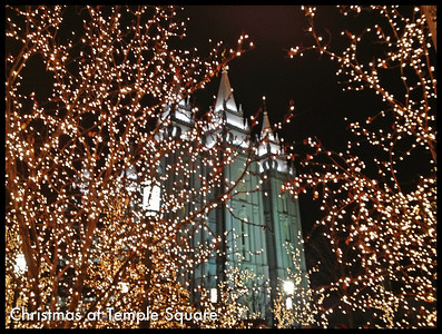 Christmas lights at Temple Square in Salt Lake City are beautiful. 11.12