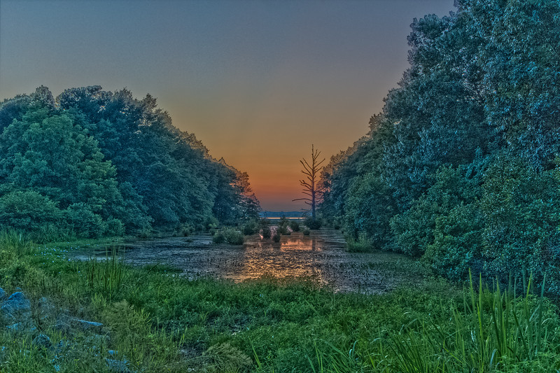 River Blue Hour