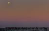 Full  Moon over Pier