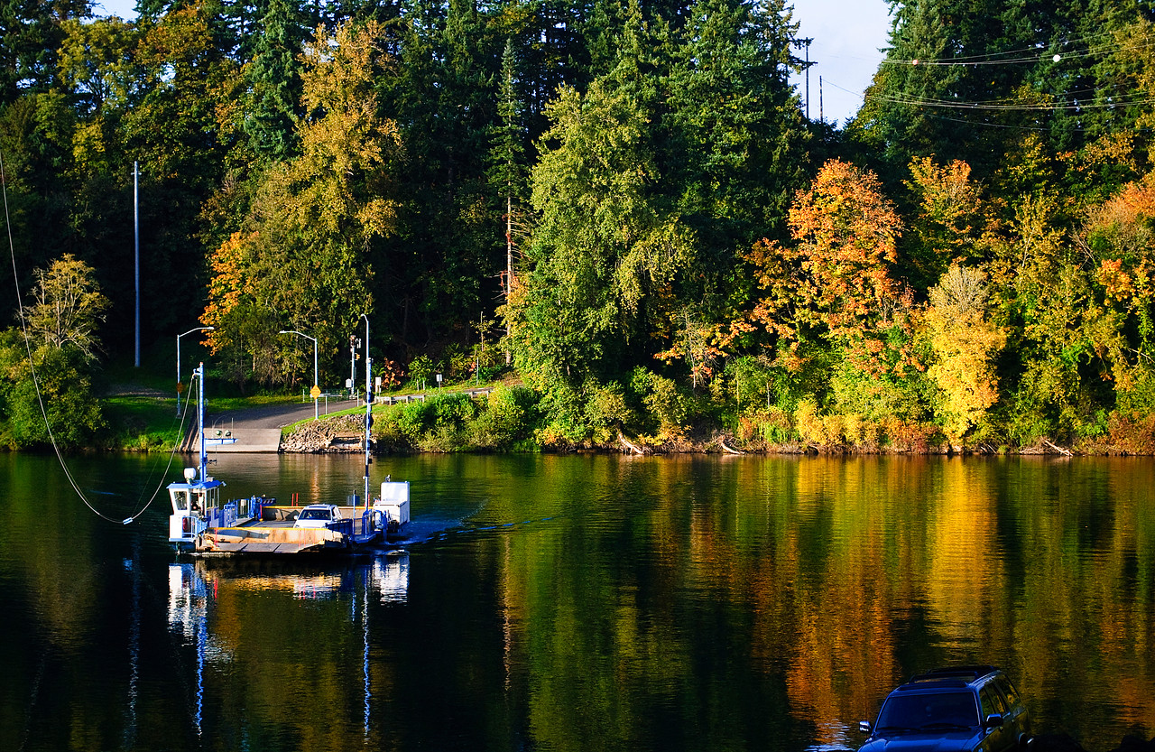 10-29-11 Autumn at the Canby Ferry