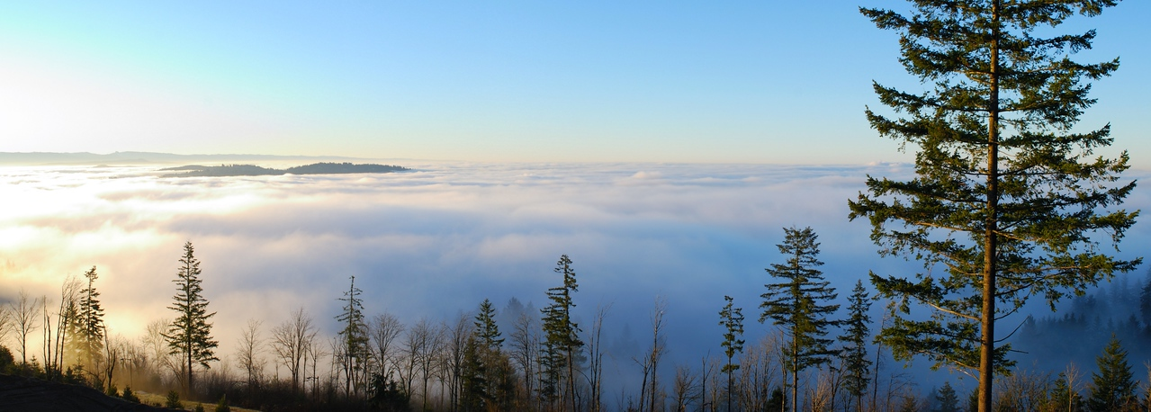 Sea of fog over Clackamas, Oregon