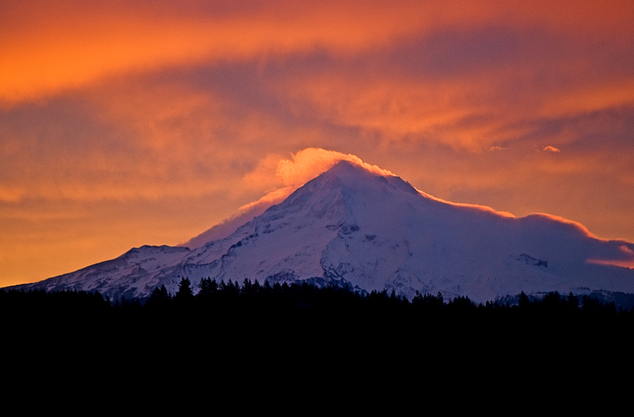 1-19-2010