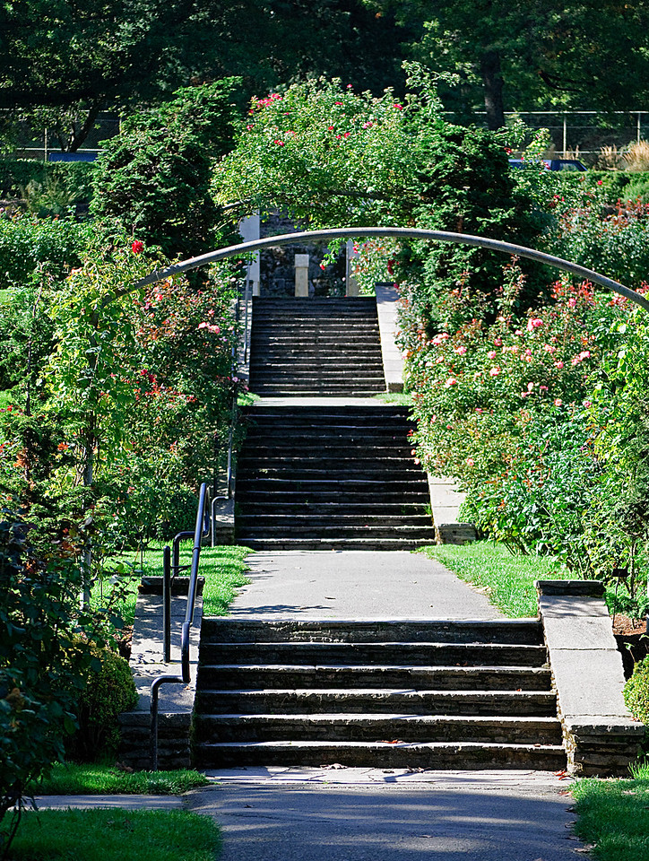 10-12-10 Stairs at the Rose Garden 