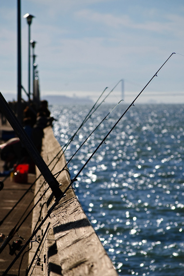 10-08-11 Fishing San Francisco BayBerkeley, CA