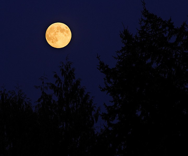 9-11-11 Harvest moon filtered through smoke from forest fires