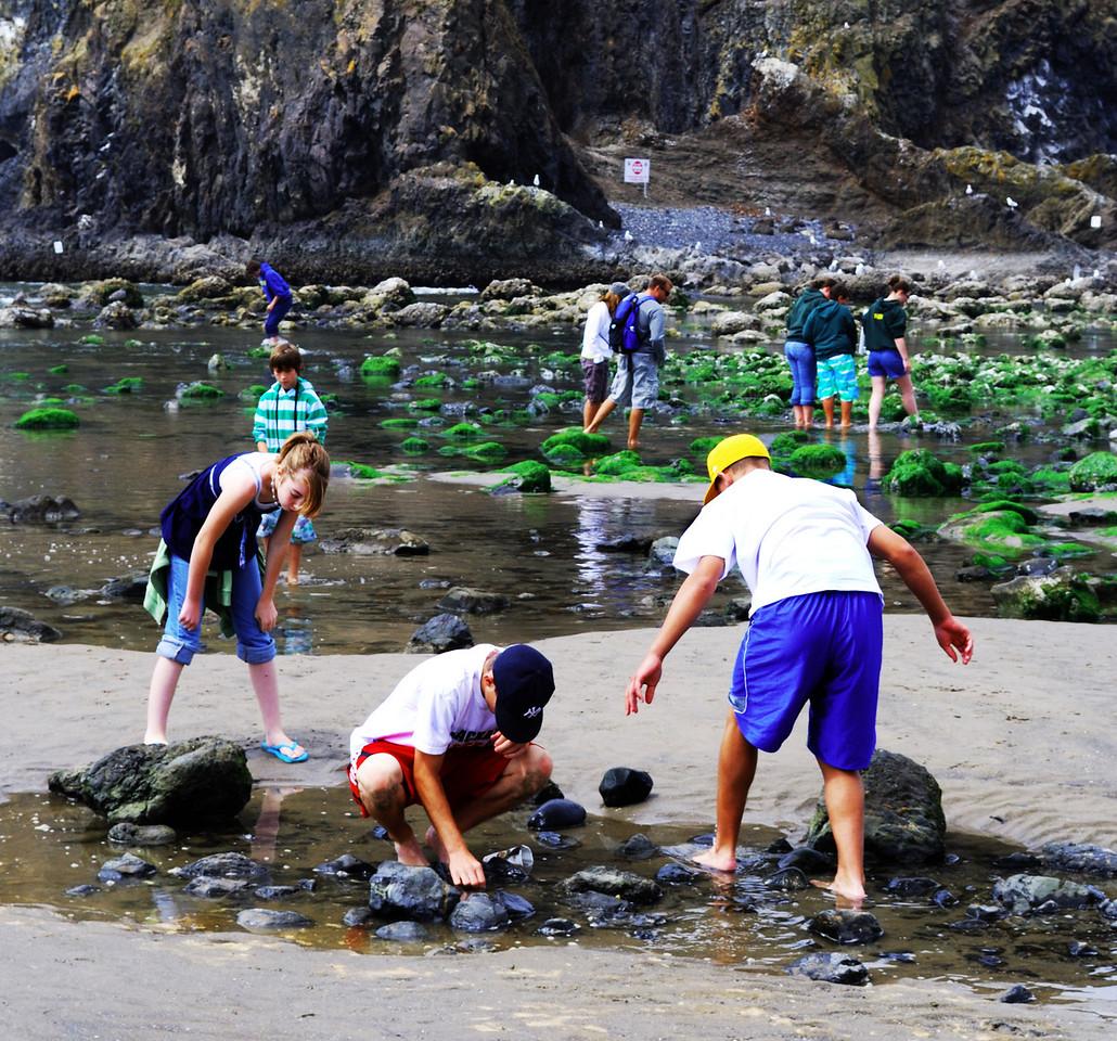 8-15-09  Tidepools at Haystack Rock  Cannon Beach, Oregon