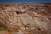 Blue Mesa Scenic Views