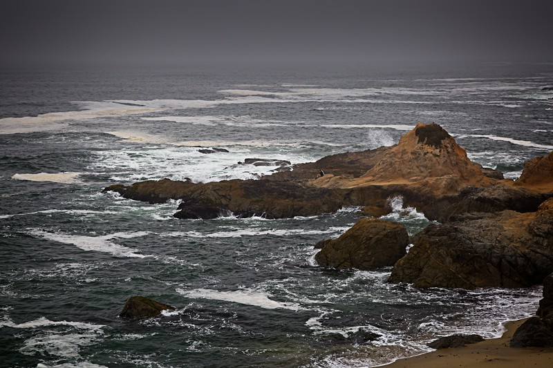 Bodega Bay Trailhead in the Fog