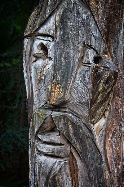 Rick's POTD  -  Chainsaw and Chisel Art
