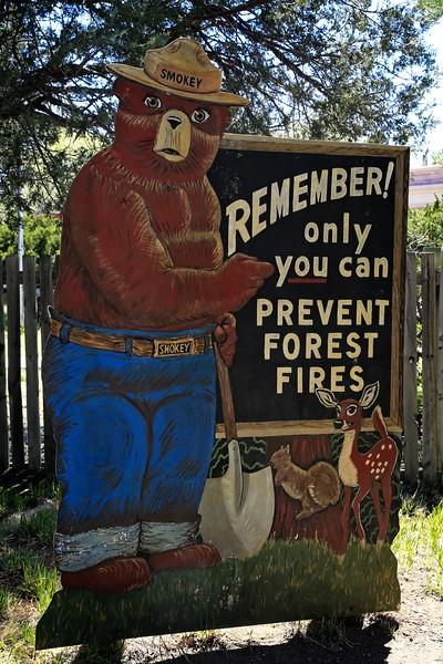 Smokey Bear Reminds us that it is Fire Season