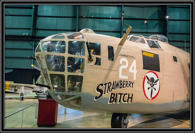 "Consolidated B-24 Liberator, ""Strawberry Bitch"""