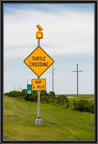 Unusual Sign