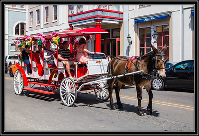 Mule Drawn Carriage