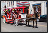 Mule Drawn Carriage