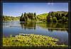 Lake Aberdeen