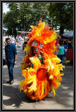 Elaborate Feathered Costume