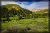 Highway 82 & Independence Pass, CO