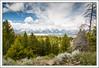 Grand Tetons National Park, WY