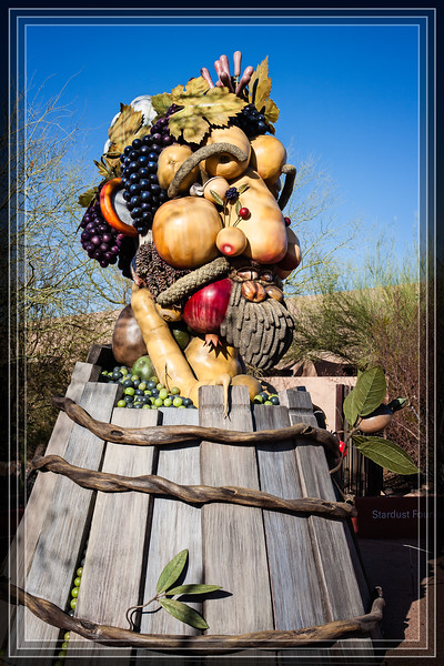 """Sculpture The Four Seasons by Philip Haas """"Autumn""""  <a href=""""http://www.rickwillis-photos.com/Nature/Botanical-Gardens/AZ-Phoenix-Desert-Botanical/i-SLd7CCV"""">Link to Photo Without Frame</a>  Thank You for Making this Daily Photo the #1 Pick on 11-20-2013"""