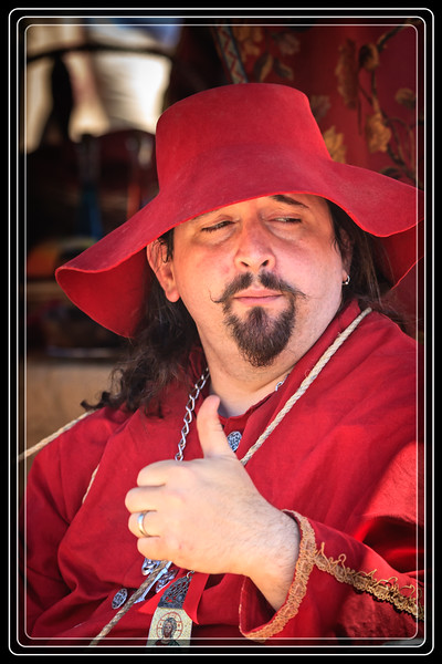 A Cardinal Attending the Arizona Renaissance Festival?     Link to Photo Without Frame