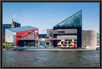 The National Aquarium