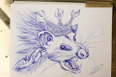 "29/365 - ""opossum king"""