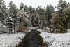 First fall snow in the Black Hills