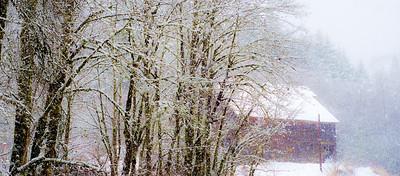 1/15/2012 Snow day