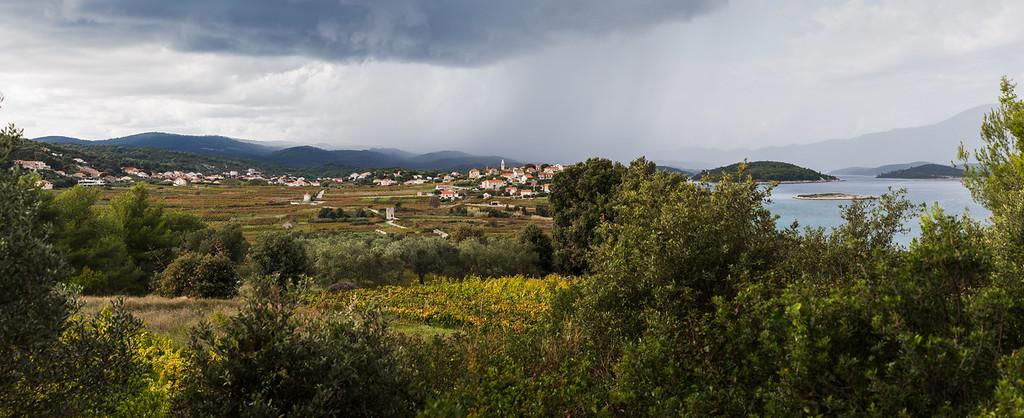 Grk vineyards panorama